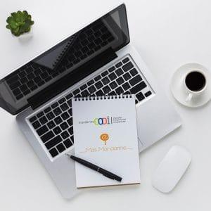 Mise en place de la stratégie digitale de l'entreprise Mandarine CODI