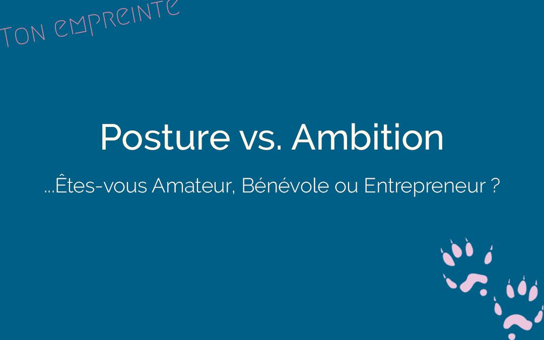 La posture de l'entrepreneur : Amateur, Bénévole ou Entrepreneur ?