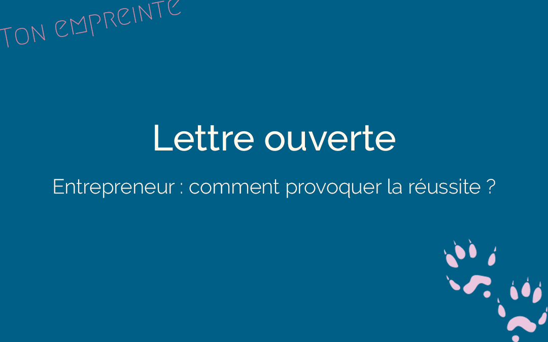 Entrepreneur : comment provoquer la réussite ? Lettre ouverte à moi-même...