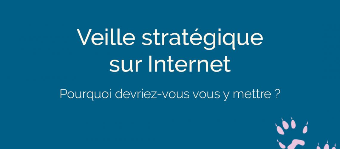 Veille stratégique sur internet - ton empreinte