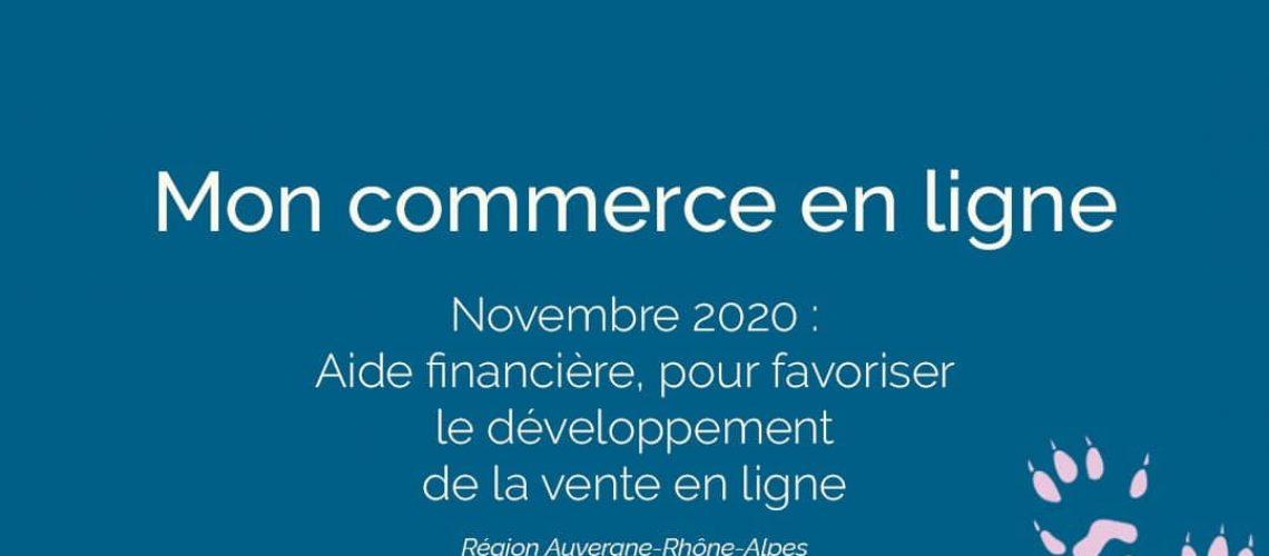 aide financière pour favoriser le développement de la vente en ligne