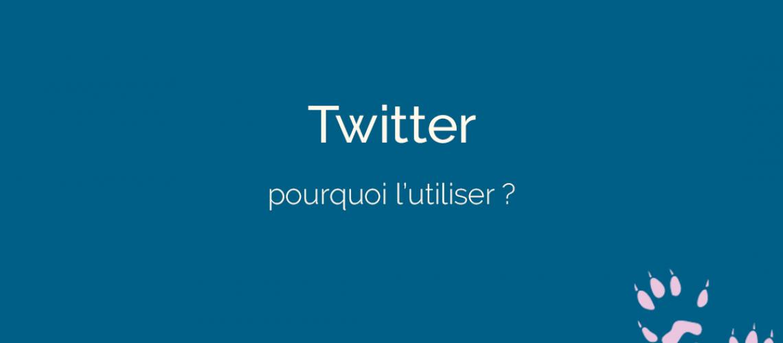 utiliser Twitter - ton empreinte